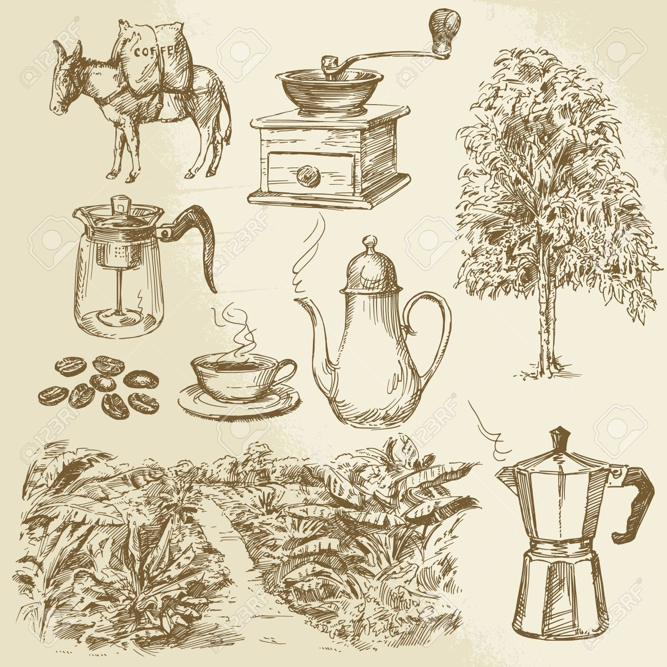 coffee collection - hand drawn vector illustration Standard-Bild - 27447032