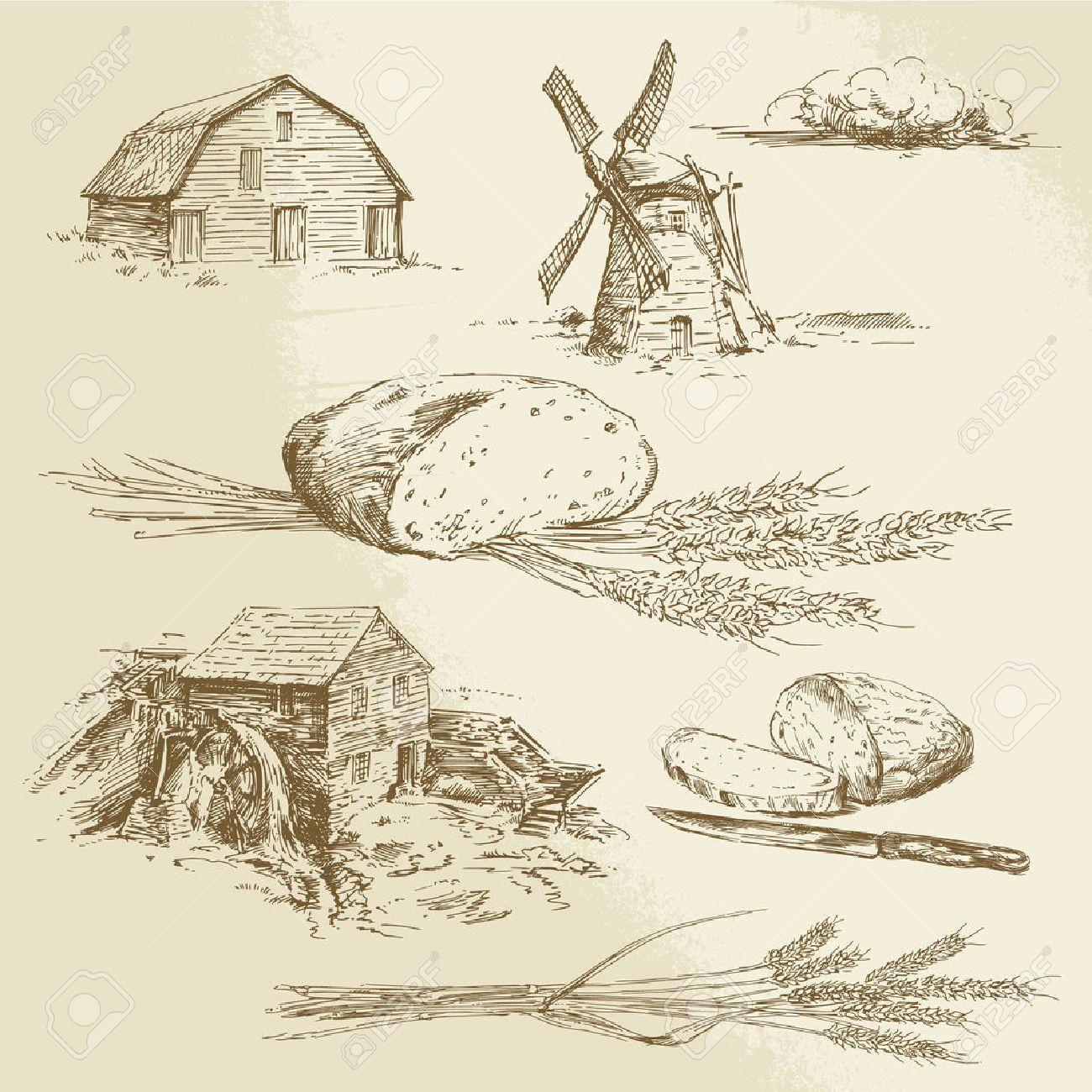 bread, farm - hand drawn illustration - 31366390