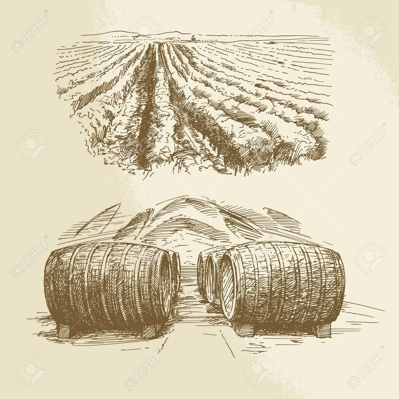 barrels, vineyard, harvest, farm - hand drawn collection Standard-Bild - 35717829