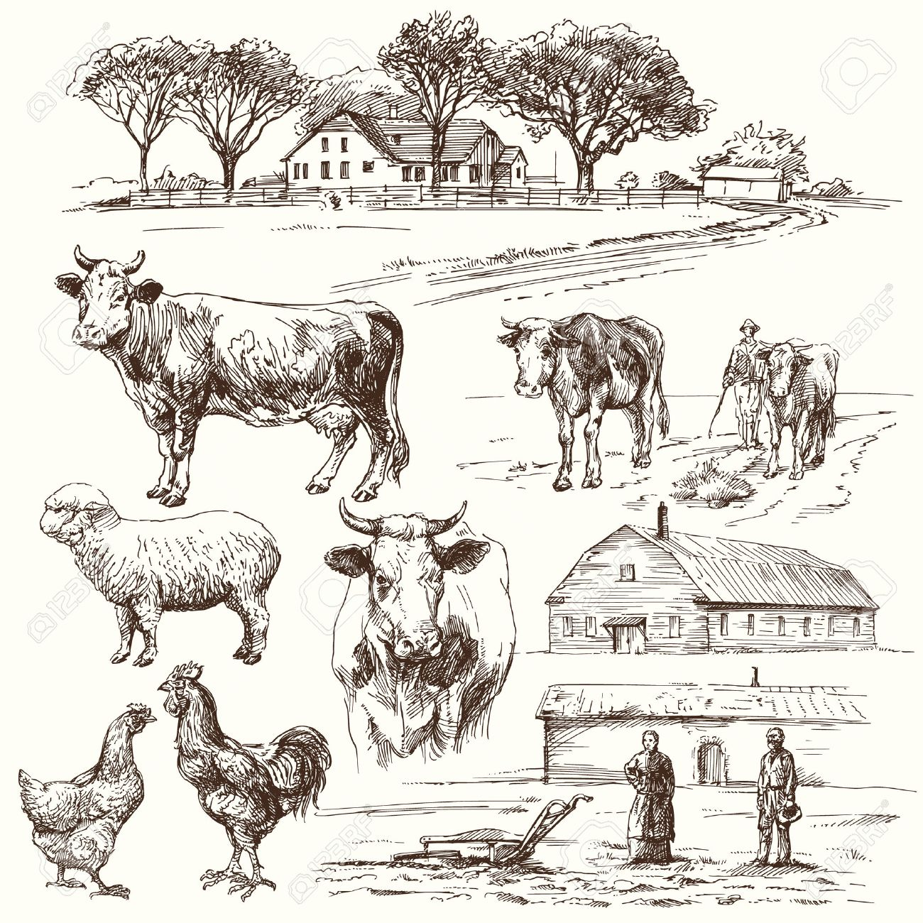 farm, cow, agriculture - hand drawn collection Standard-Bild - 36853315