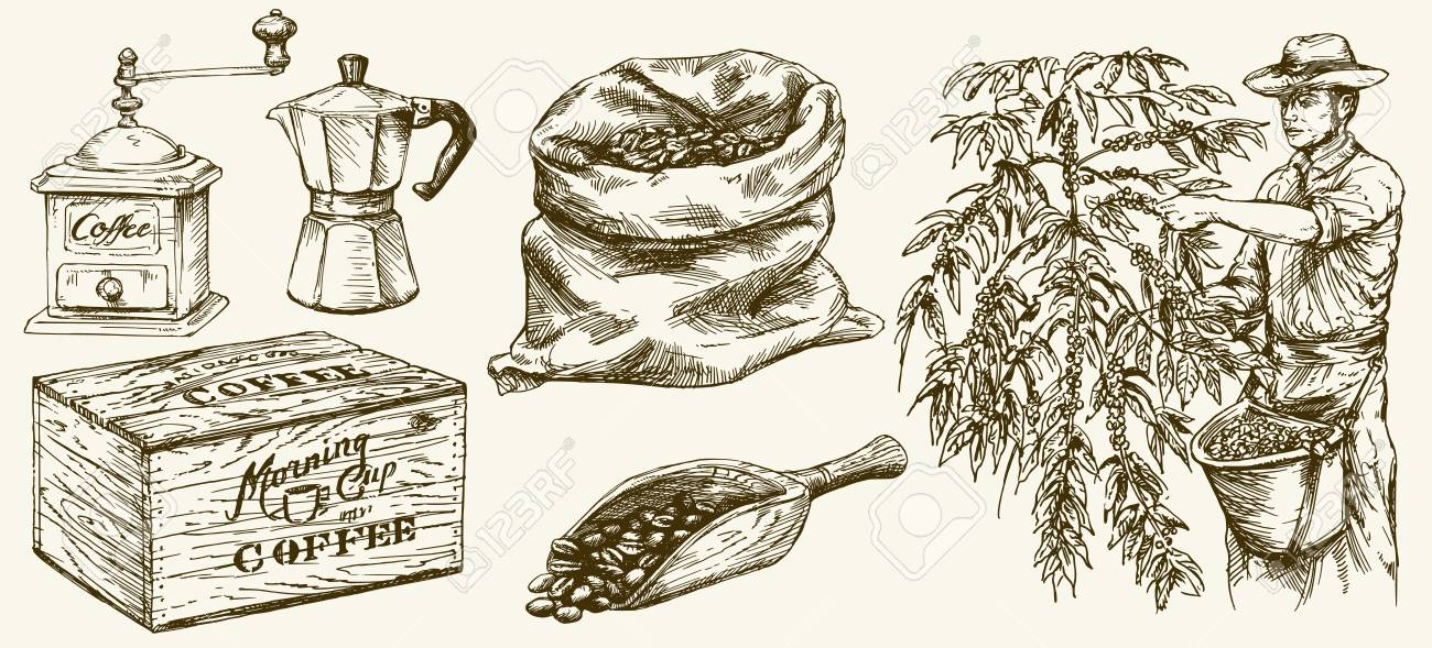 Farmer picking coffee beans. Canvas bag and scoop, grinder. Hand drawn set. - 85860690