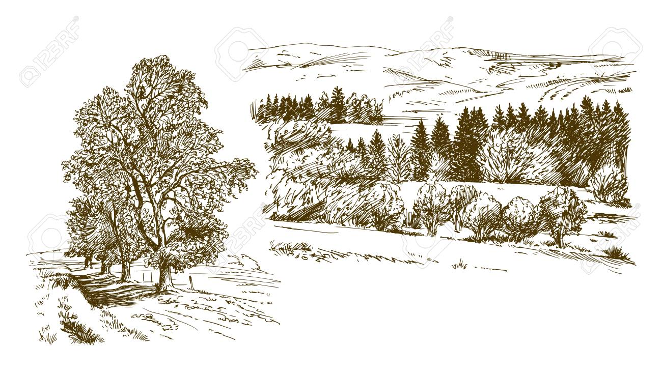 Rural landscape. Hand drawn set. - 127689057