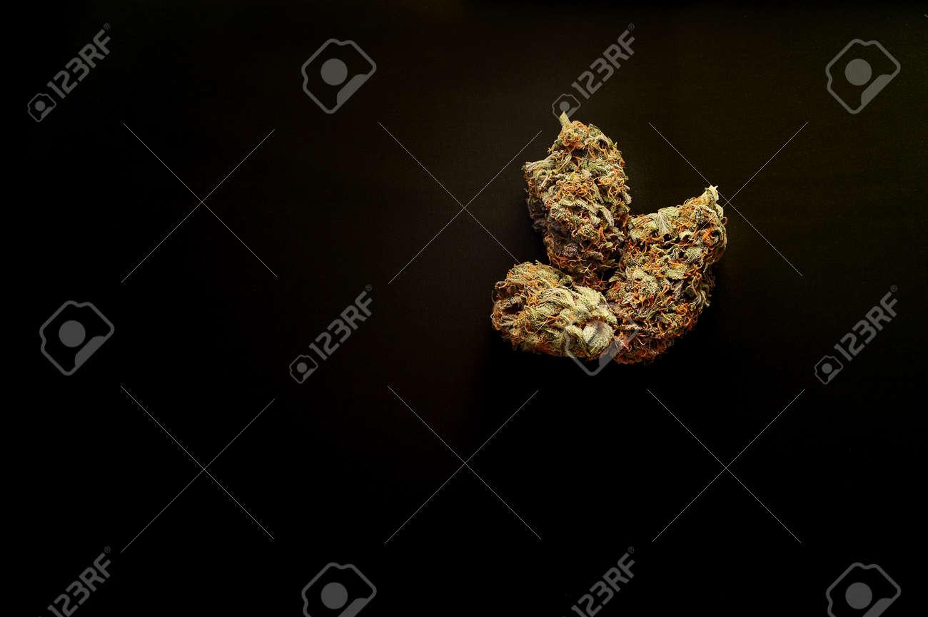 Marijuana buds closeup. Medicinal cannabis flowering on black background. Hemp recreation, medical usage, legalization. - 168963303