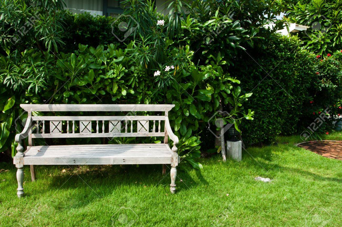 Vintage Wooden Bench In The Garden Stock Photo   11785455