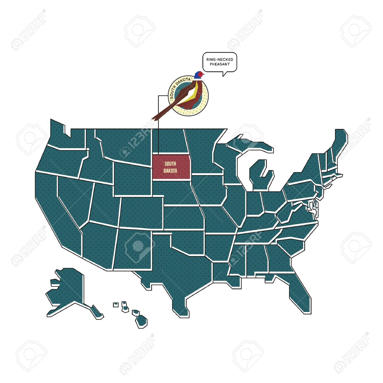 Us Map With South Dakota State Bird Royalty Free Cliparts Vectors