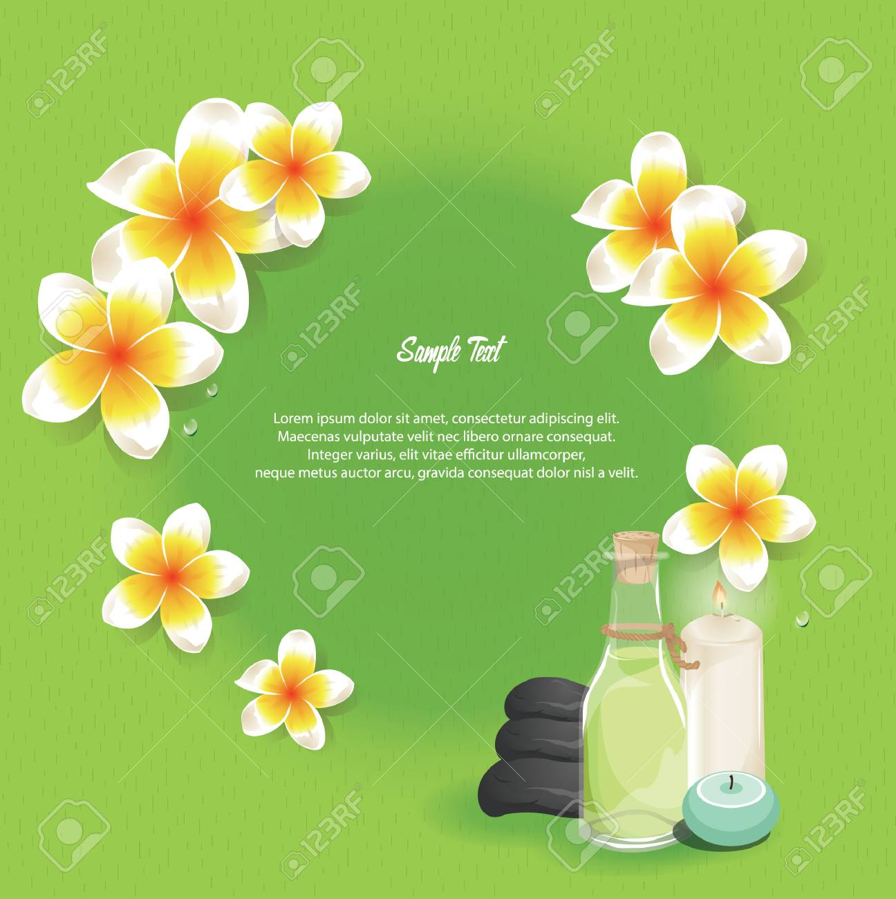 spa themed template - 106671966