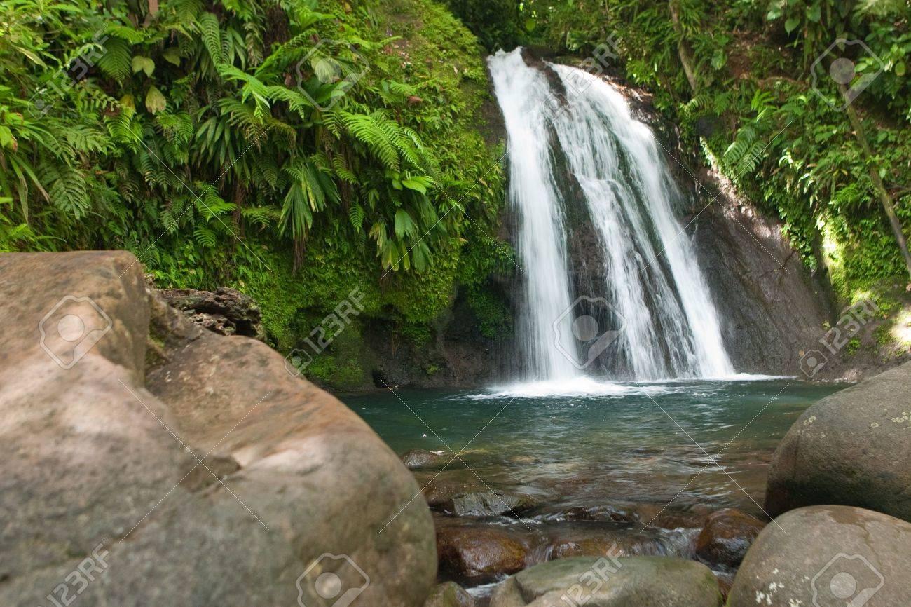 Waterfall on the Guadeloupe island - 7798986