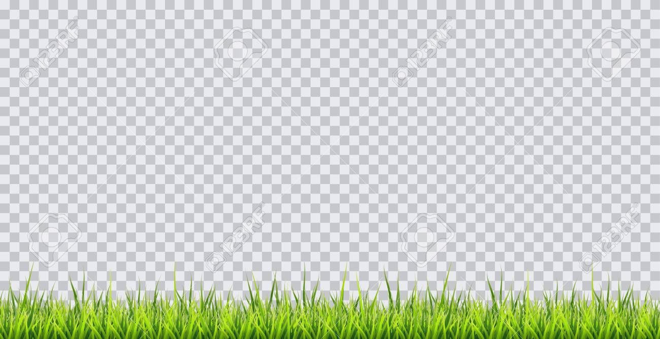 grass border no background cartoon grass border vector illustration on transparent background stock 96754542 border illustration on transparent background royalty