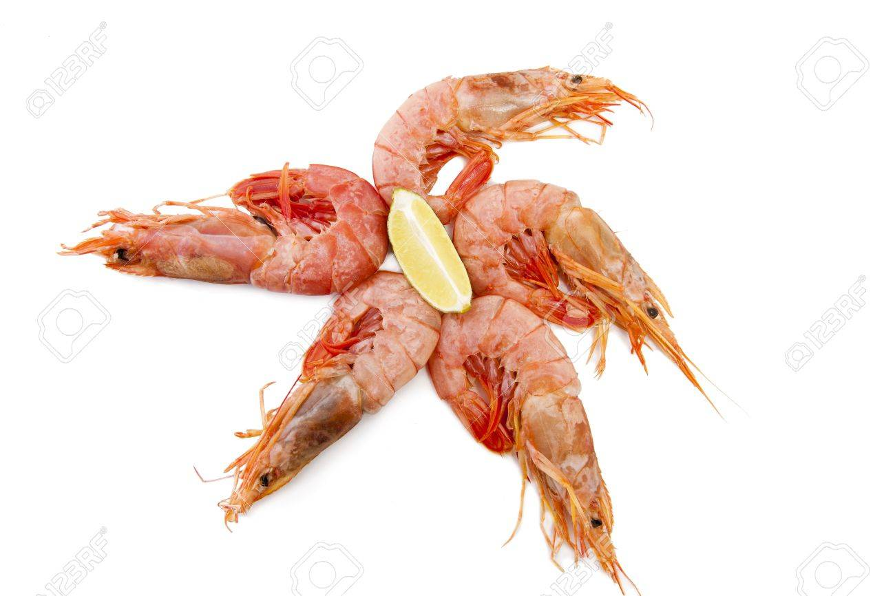 fresh seafood, shrimps and crustaceans Stock Photo - 11066052