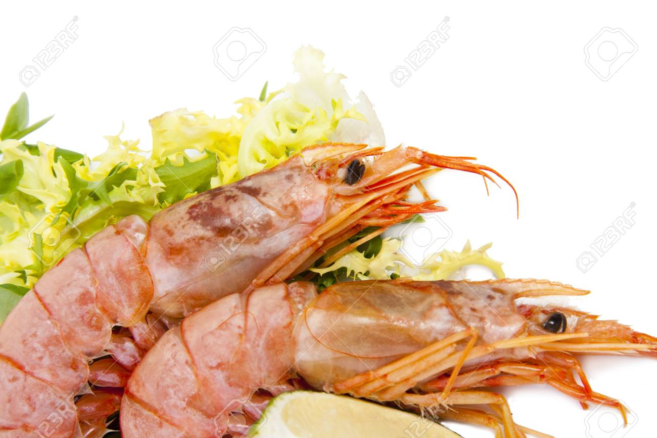 fresh seafood, shrimps and crustaceans Stock Photo - 11066067