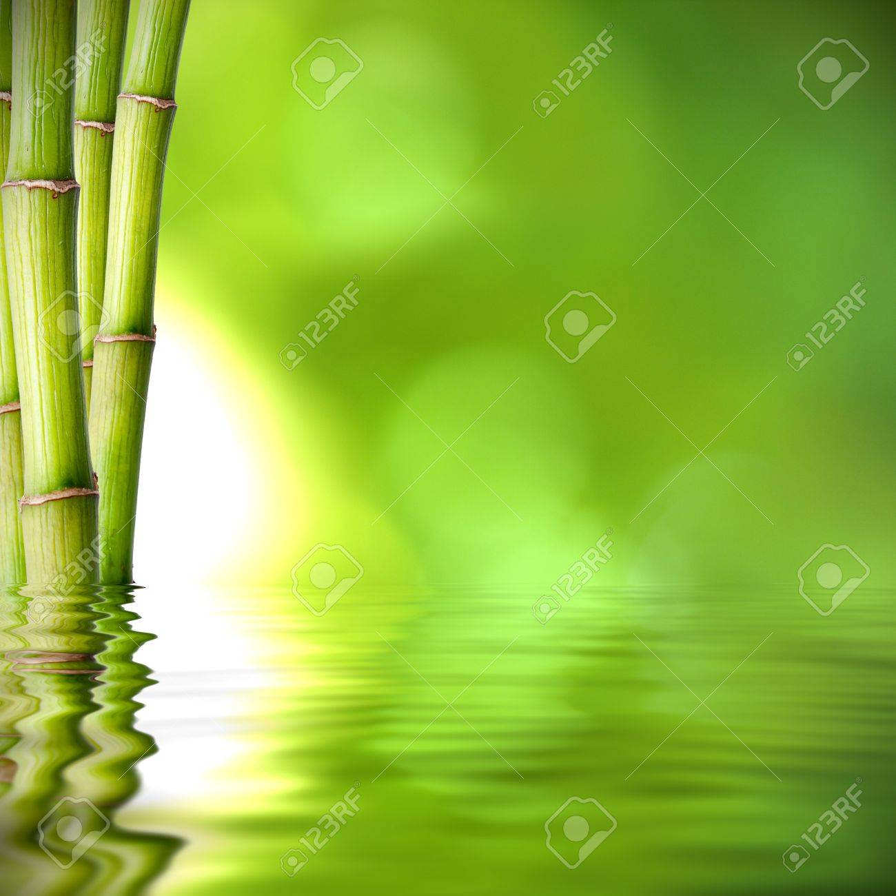 background of natural spa with plant and reflection in the water - 14777153