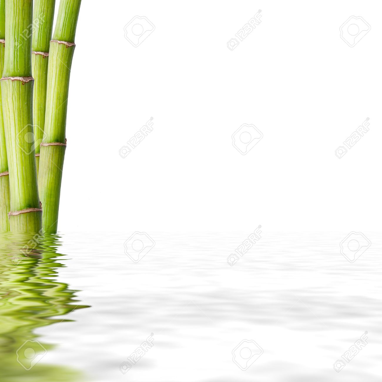 bamboo trunks, fund spa decoration - 15559407