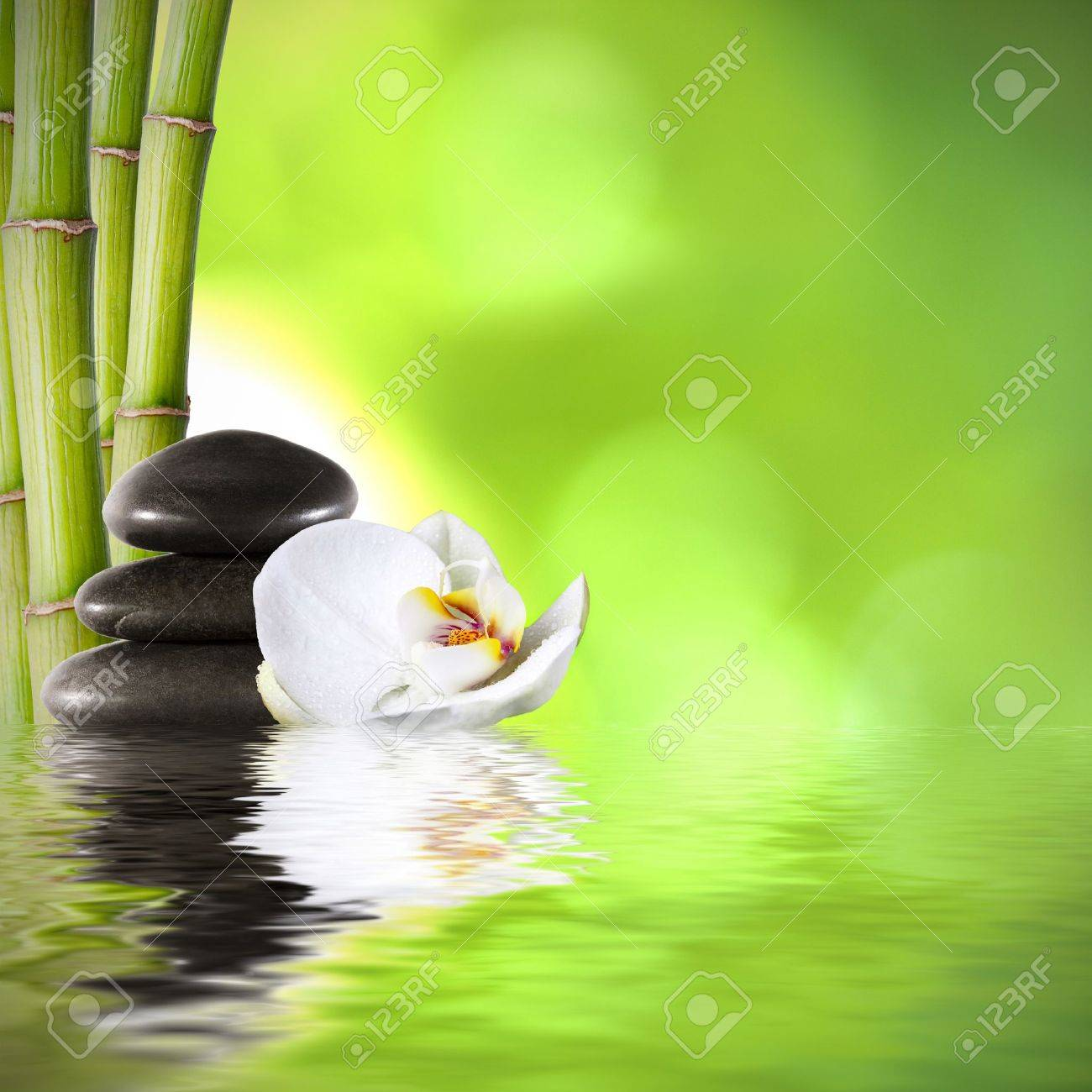 bamboo trunks, fund spa decoration stock photo, picture and