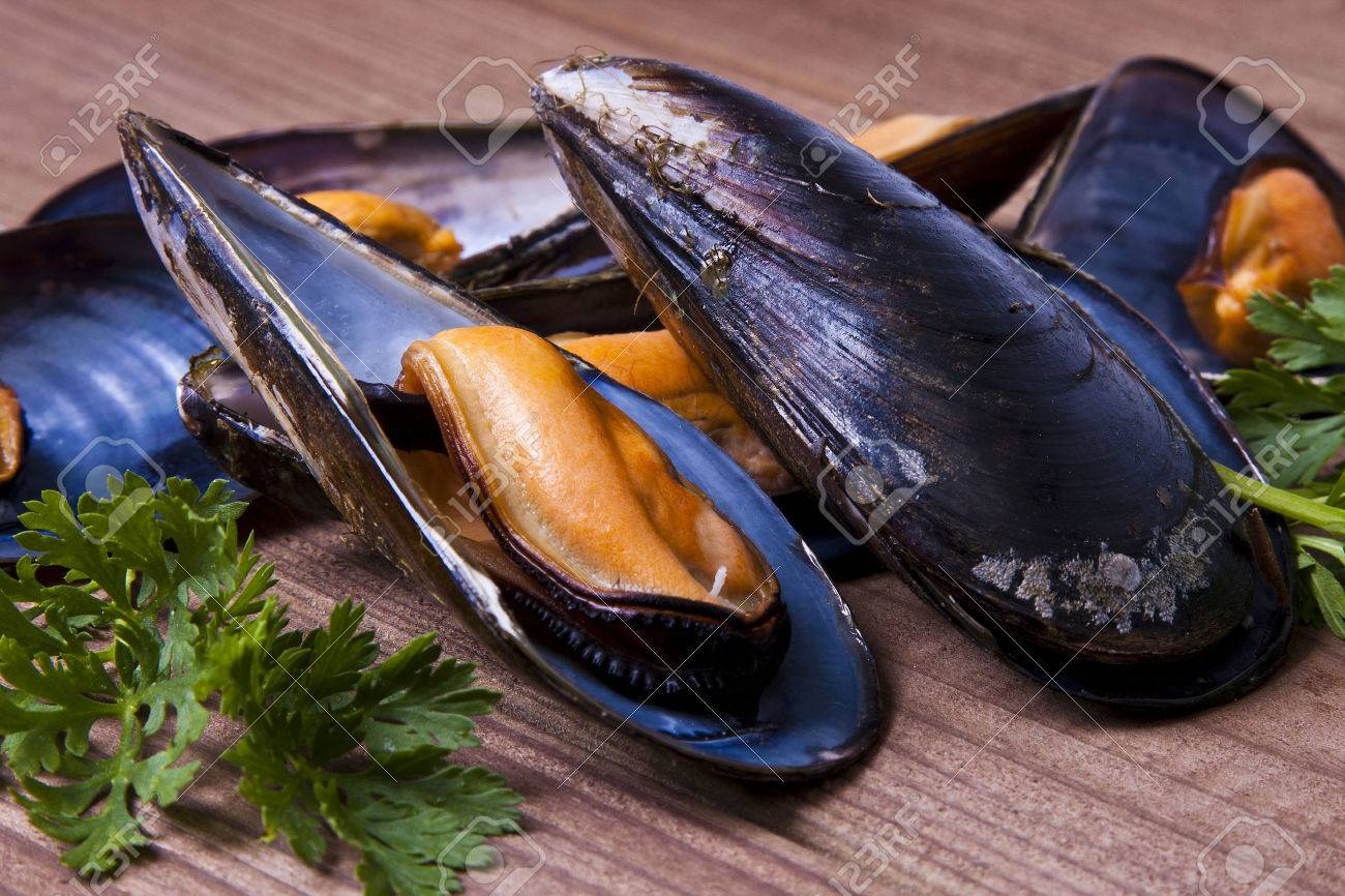 mussels - 35168539