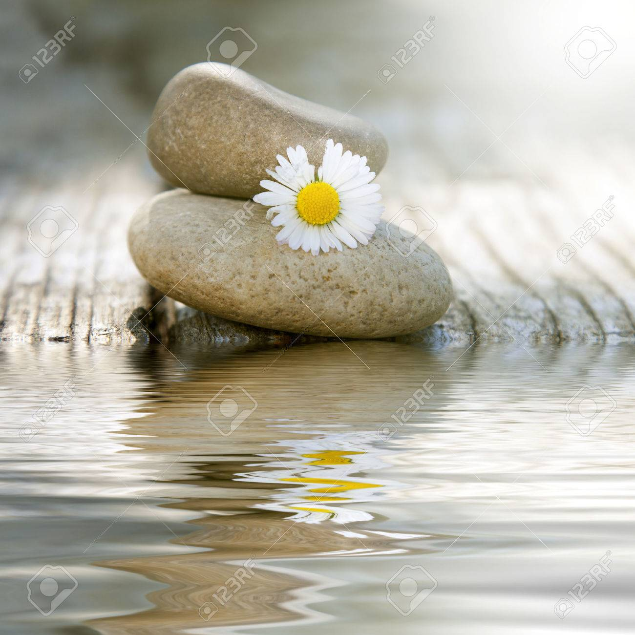 stones in balance with daisy and reflection in water - 54967942