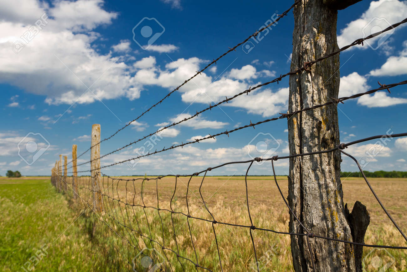 Barbed Wire Fence, Kansas Pasture Stock Photo, Picture And Royalty ...