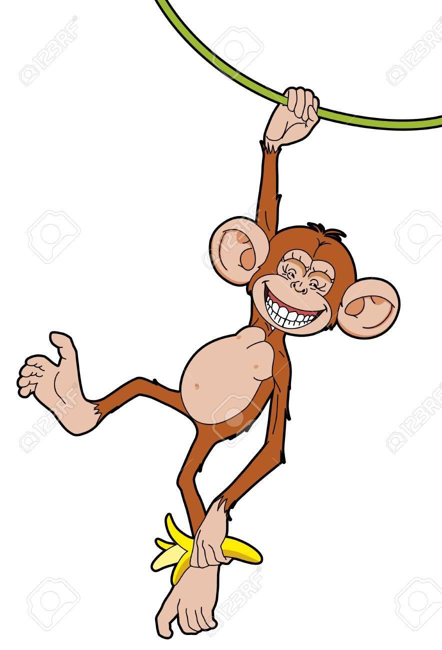 Monkey with a banana  hanging of  liana Stock Vector - 2629716