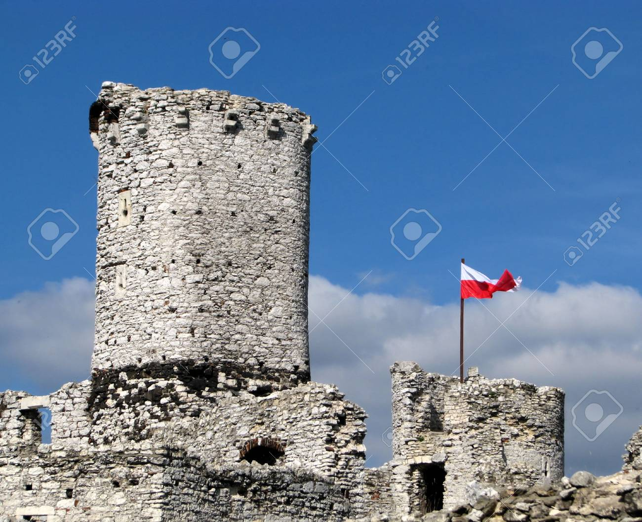 The old castle ruins of Ogrodzieniec fortifications, Poland Stock Photo - 8800917