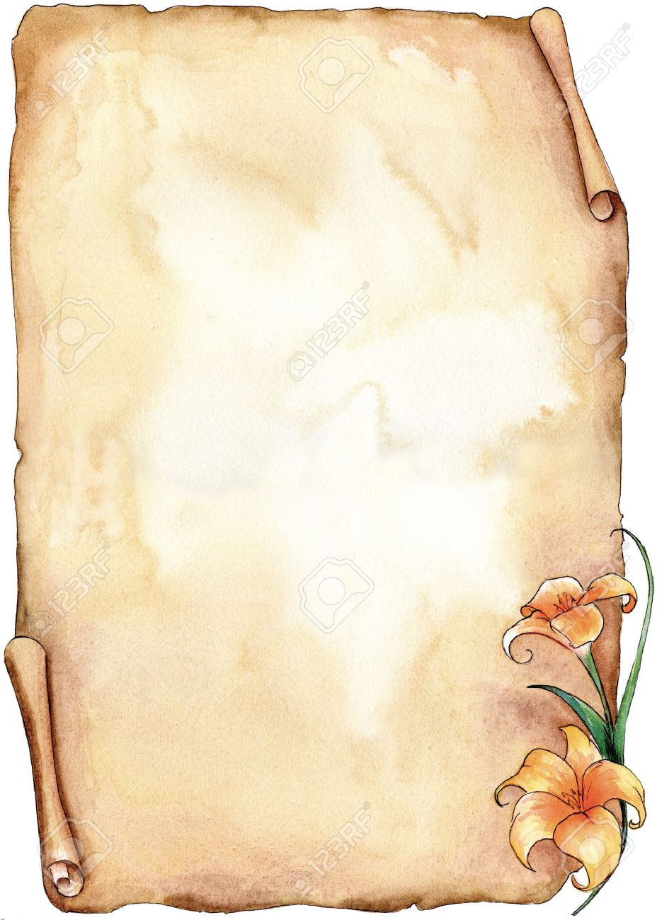 Sepia old parchment with a lilium hand made with watercolors Stock Photo - 13033958