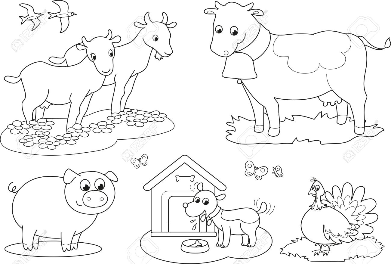 Set of coloring farm animals for children goat, cow, pig, turkey, dog and swallows - 15173868