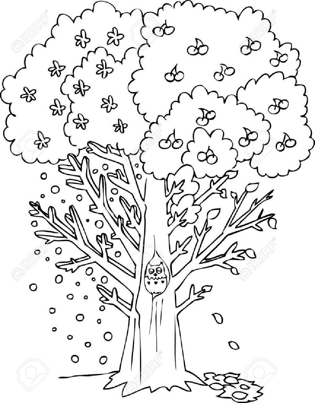 Vier Jahreszeiten Baum Lizenzfreie Bilder