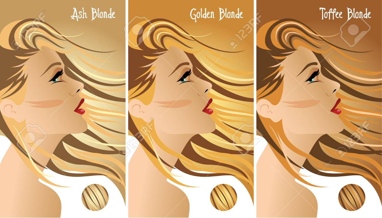 Blonde hair colors chart royalty free cliparts vectors and blonde hair colors chart stock vector 84042663 geenschuldenfo Images
