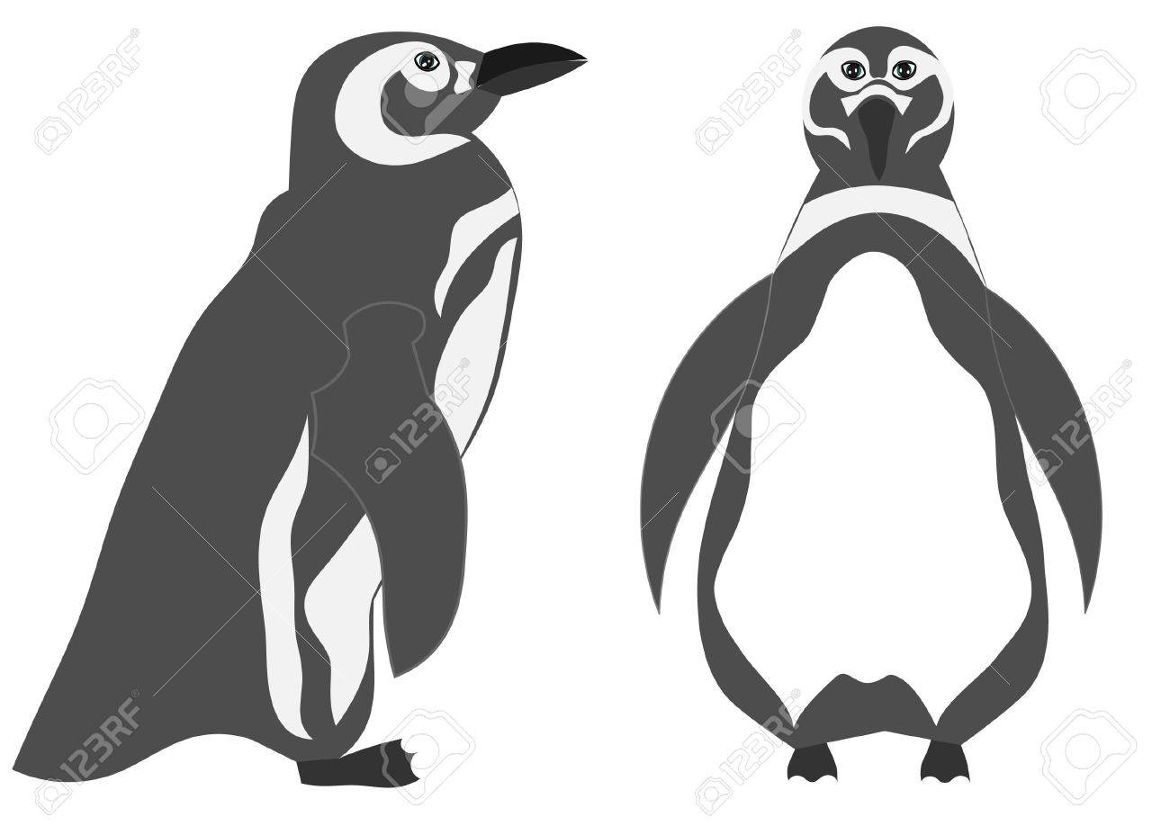 Penguin illustration Stock Vector - 11076386
