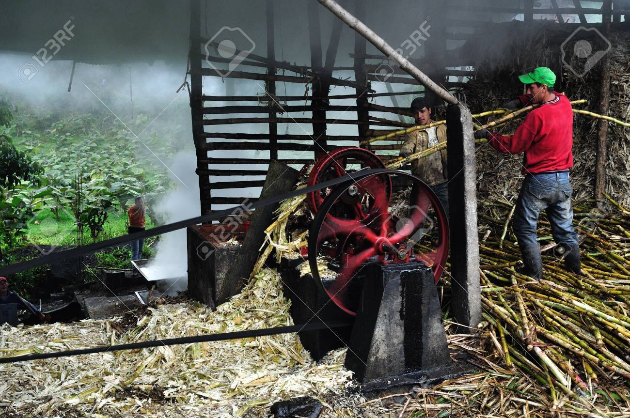 Panela ( sugarcane ) in ISNOS ( San Agustin ). Department of Huila. COLOMBIA Stock Photo - 18799722