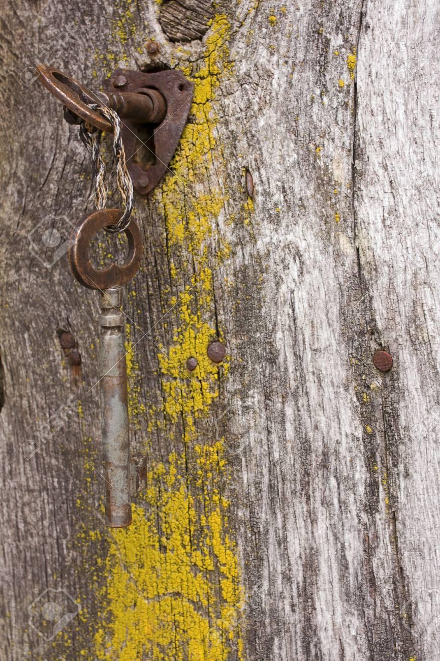 Keys in the rusty lock of an old wooden door Stock Photo - 10686503