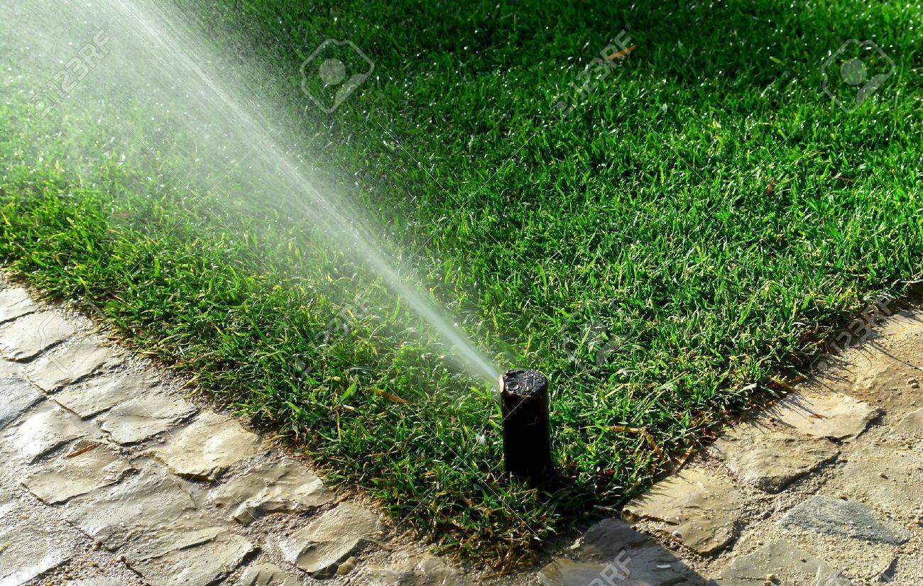 Garten Bewässerungssystem Bewässerung Rasen Lizenzfreie Fotos
