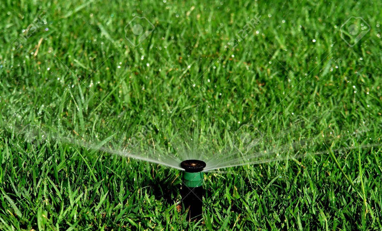 Garten Bewässerungssystem Bewässerung Lanw Lizenzfreie Fotos Bilder