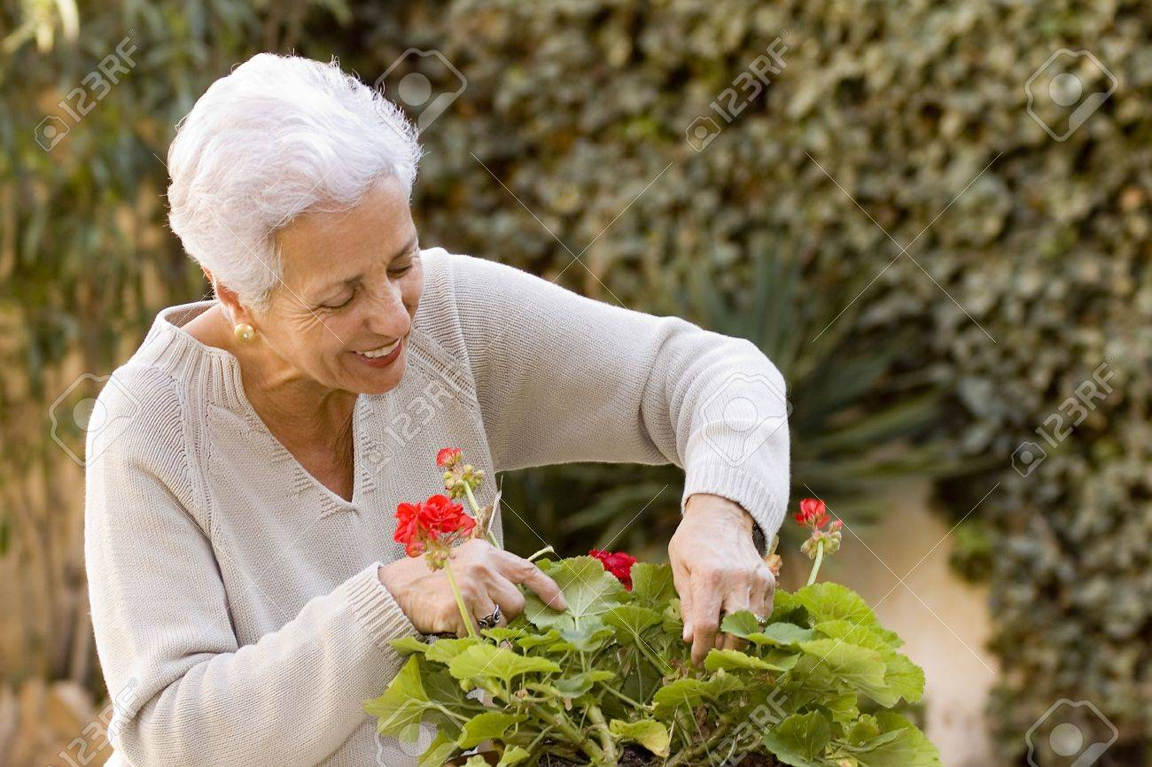 senior lady taking care of her plants Stock Photo - 854791