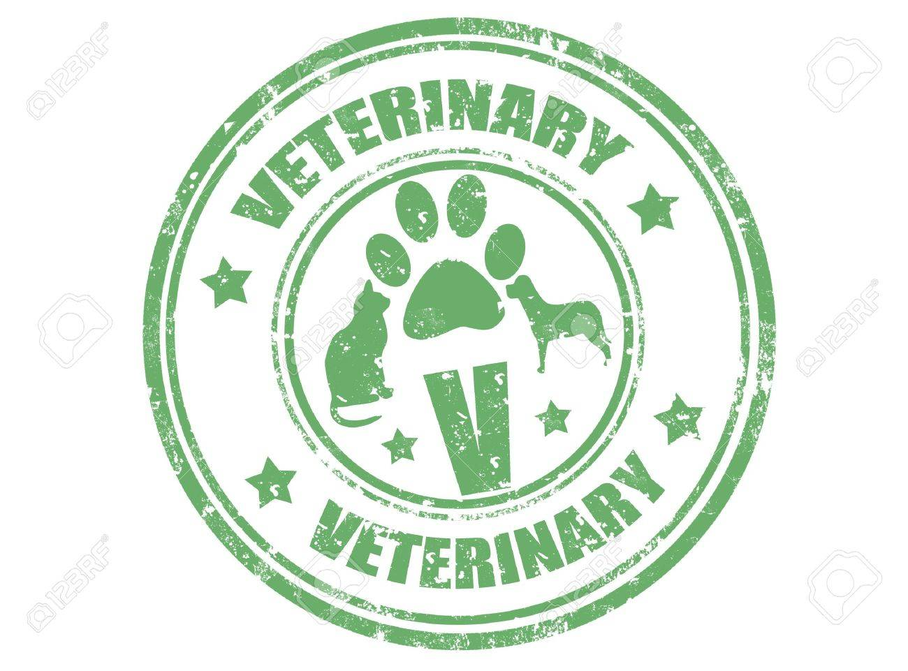 Grunge rubber stamp with word veterinary inside,vector illustration - 16942294