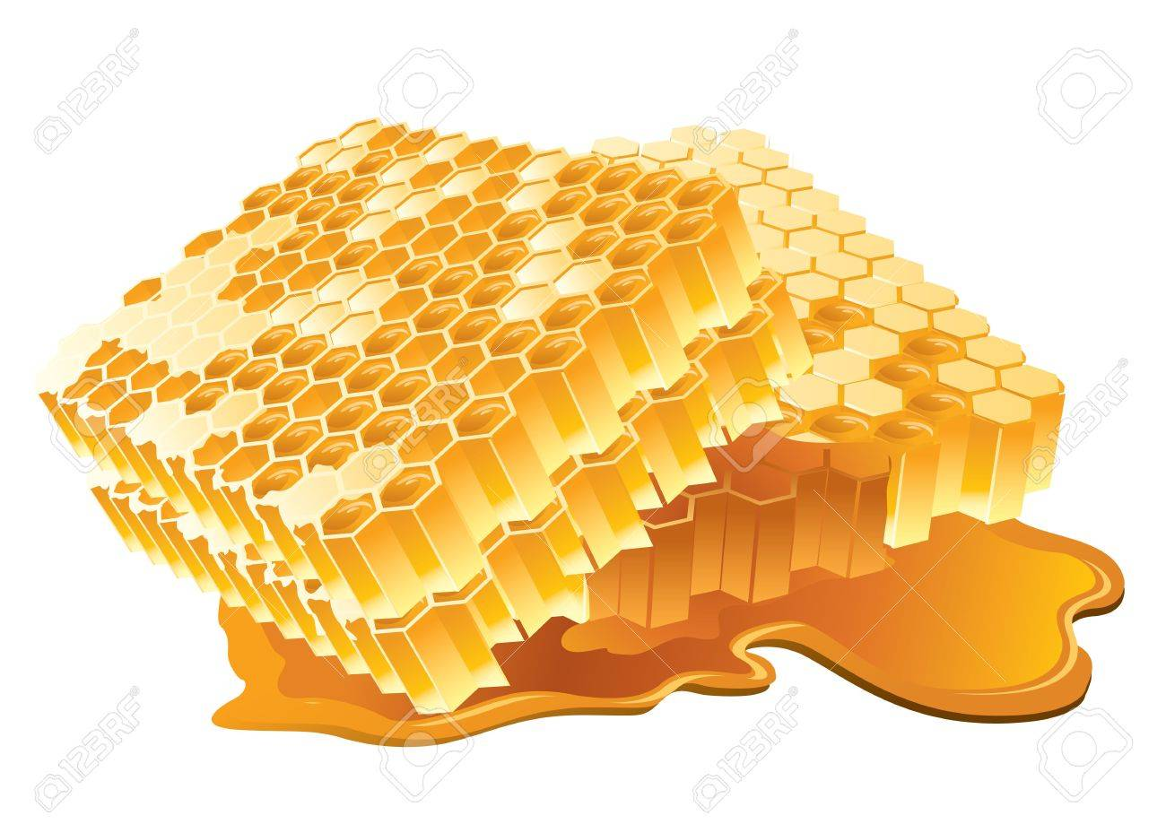 Illustration of honeycomb Stock Photo - 4588958