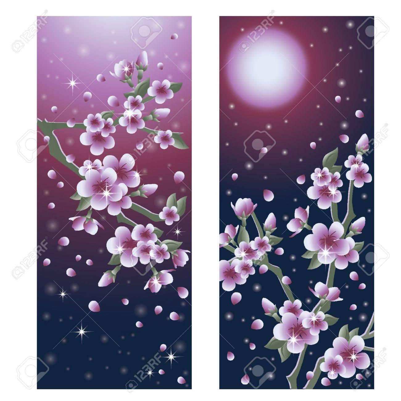 Beautiful Sacura banners, vector illustration Stock Vector - 12484724