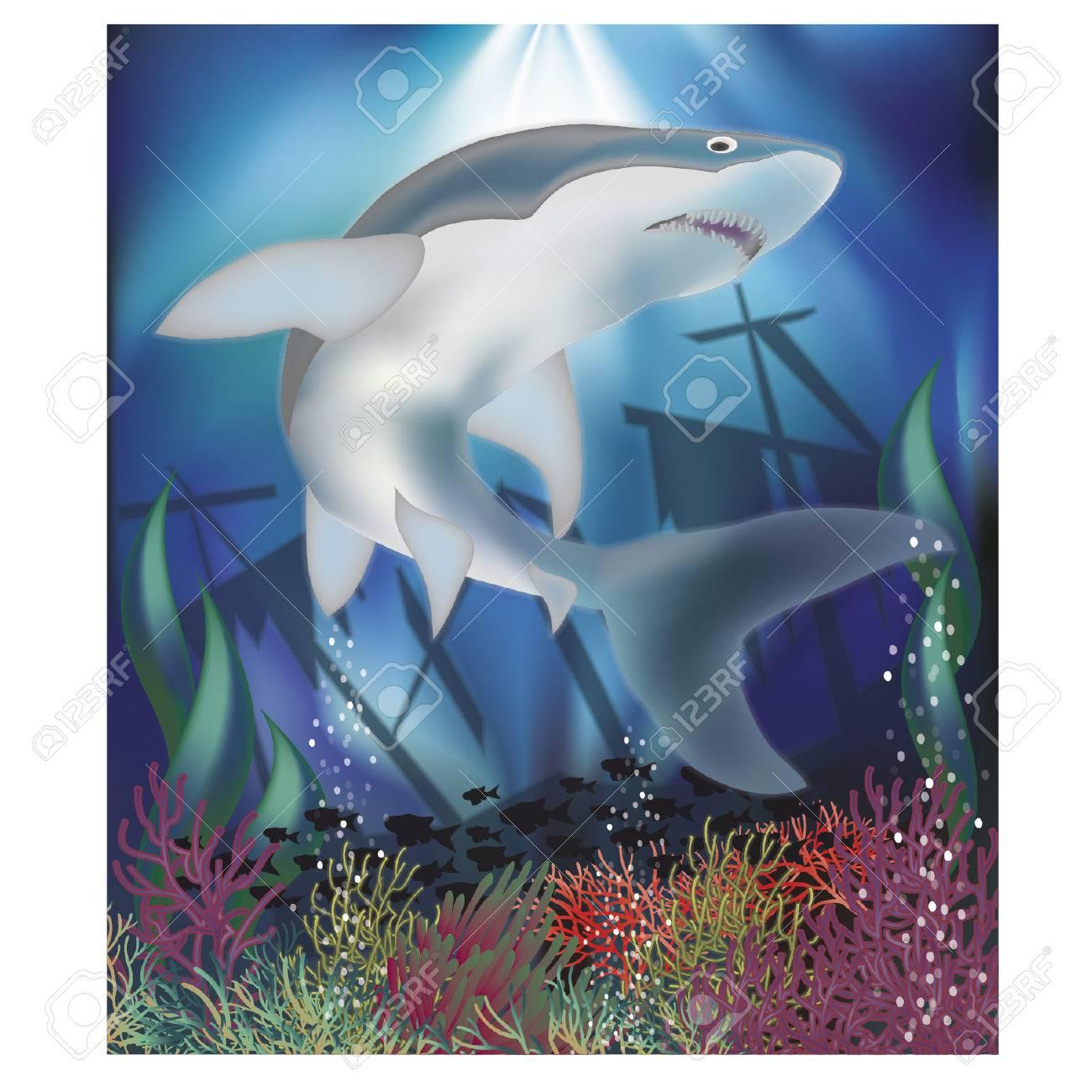 サメ イラストで水中壁紙のイラスト素材 ベクタ Image 58944352