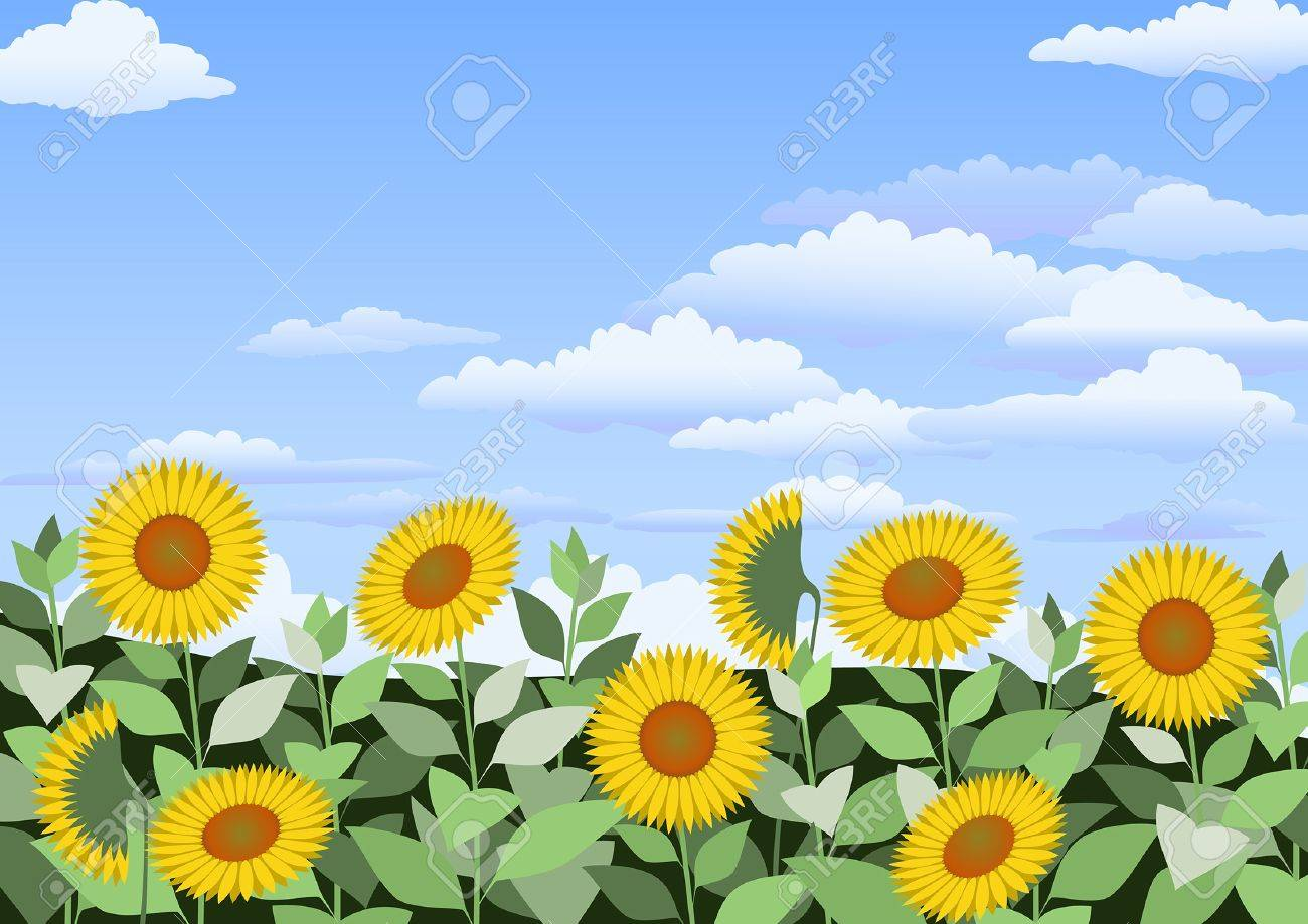Sunflowers landscape with clouds in the sky Stock Vector - 22078154