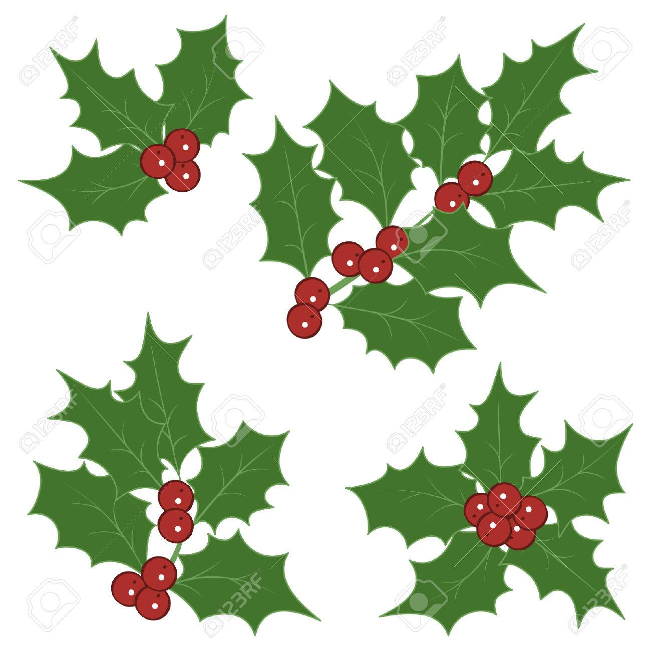 holly sprigs for christmas decorations stock vector 32375881