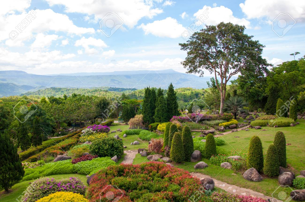 Schöner Garten Von Bunten Blumen Auf Dem Hügel Standard Bild 20550102
