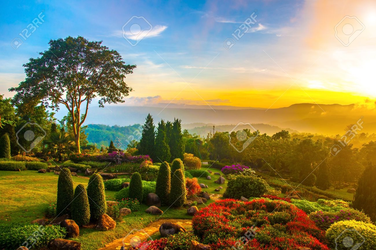 Beautiful Garden Of Colorful Flowers On Hill With Sunrise In Stock