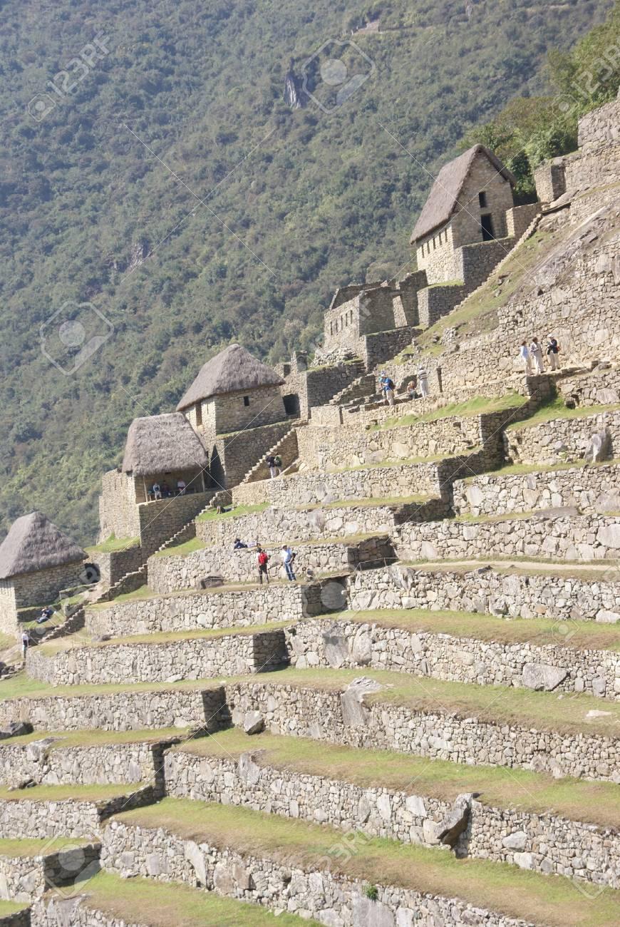 Cultivos En Terrazas Y Cabañas De Guardianes Las Ruinas Incas De Machu Picchu Perú América Del Sur