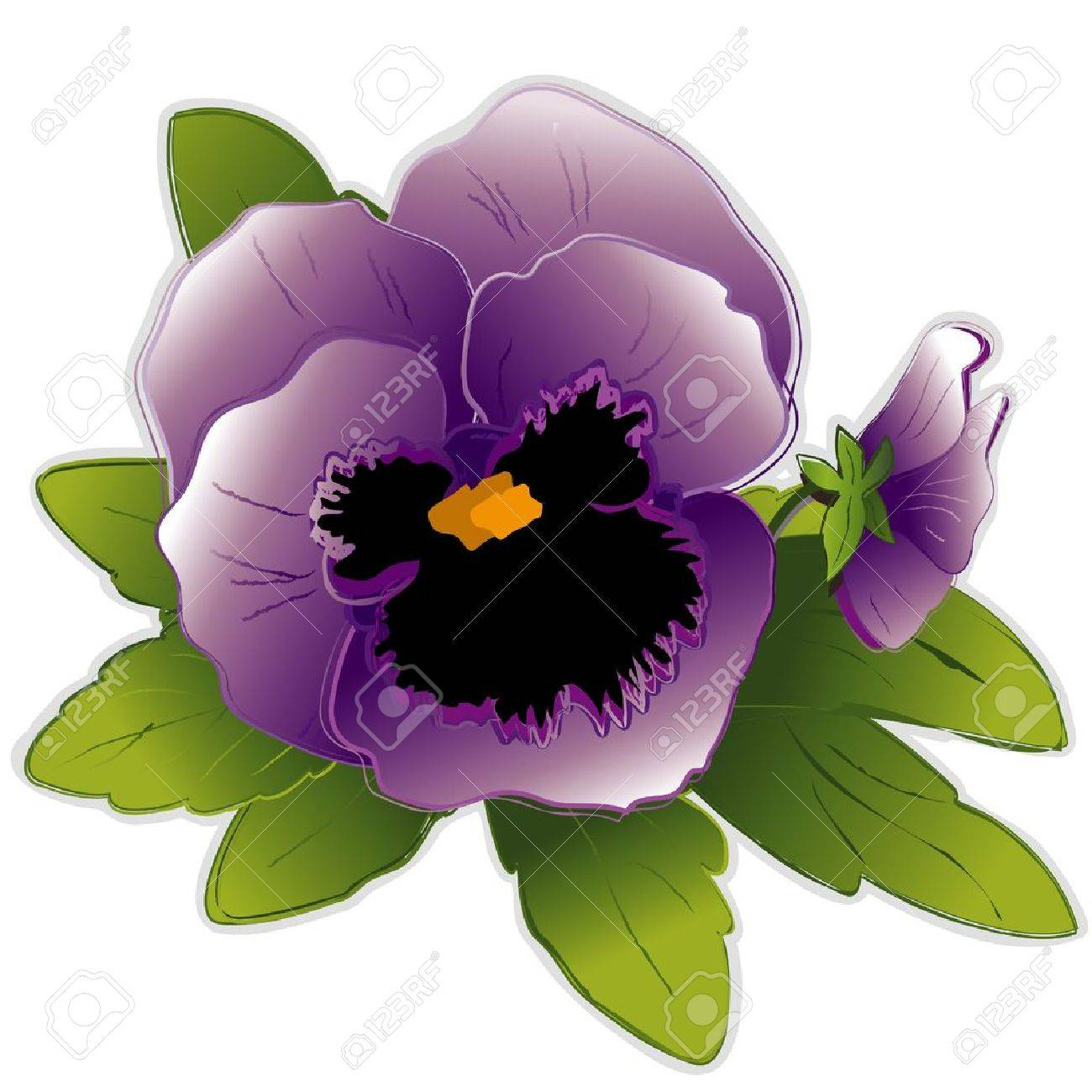 Lavender Pansy Flowers Stock Vector - 12392308