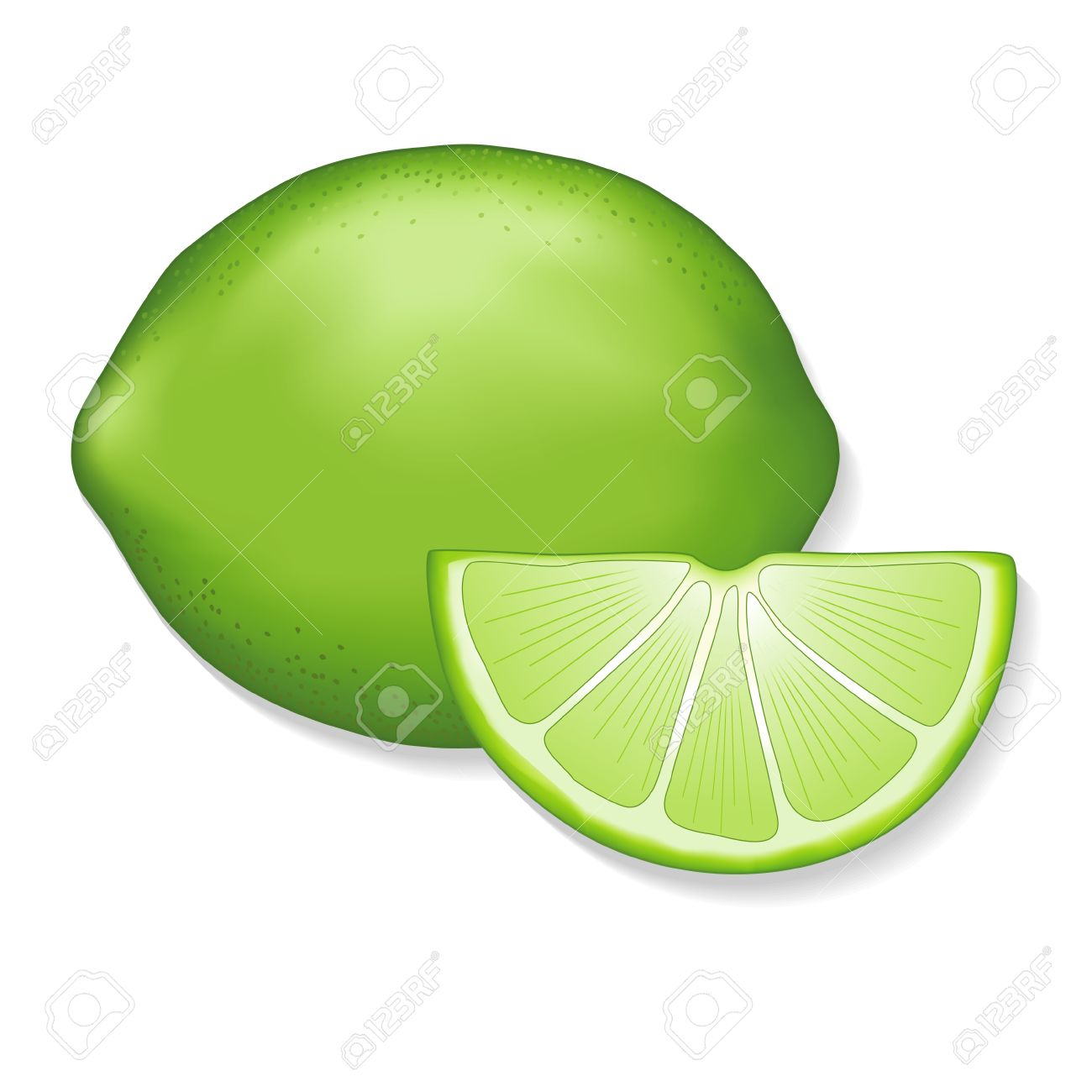Lime and lime slice illustration isolated on white EPS8 compatible - 13726204