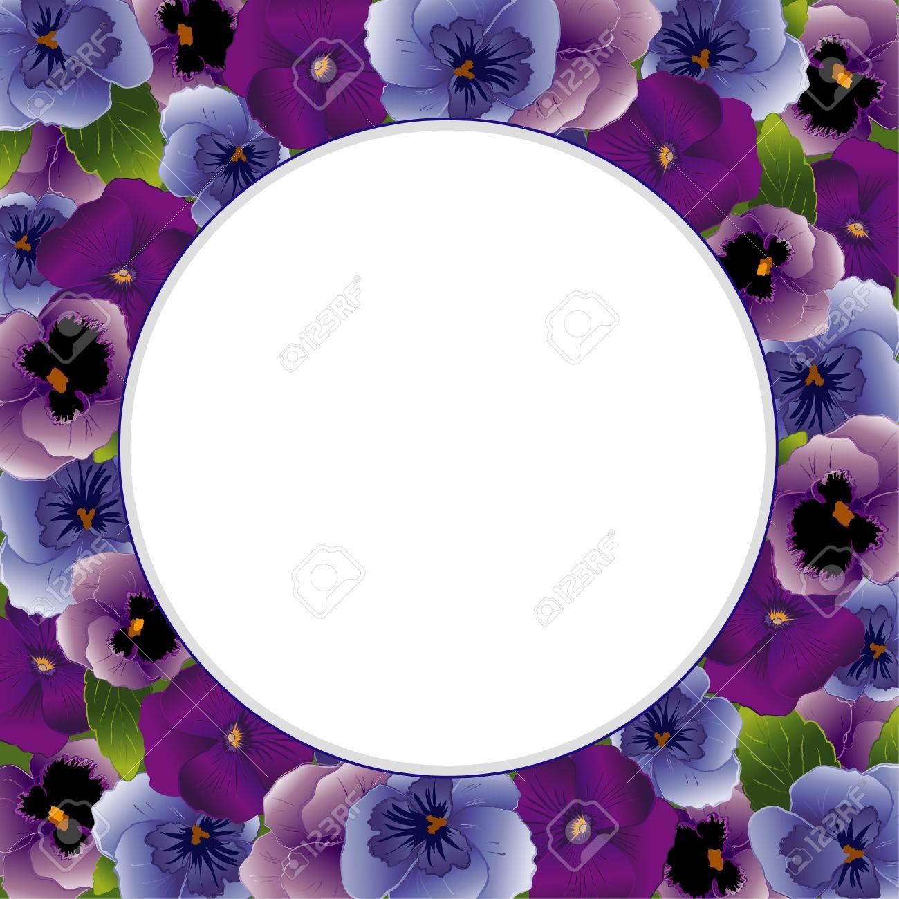 Pansy Blume Runde Bilderrahmen Frühling Bratschen Im Lavendel, Lila ...