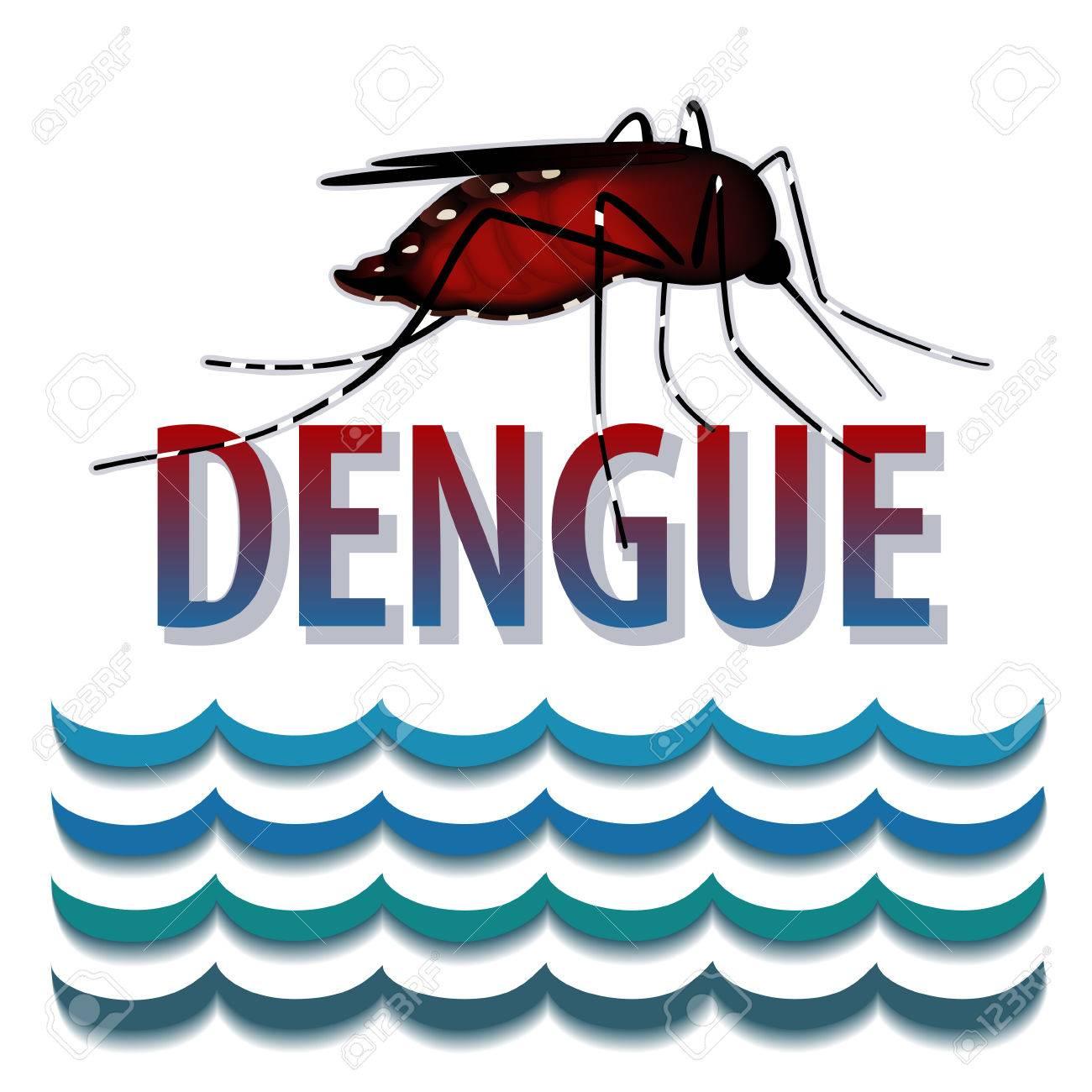Dengue Fever Infects La Fte De >> Dengue Fever Mosquito Infectious Virus Disease Standing Water