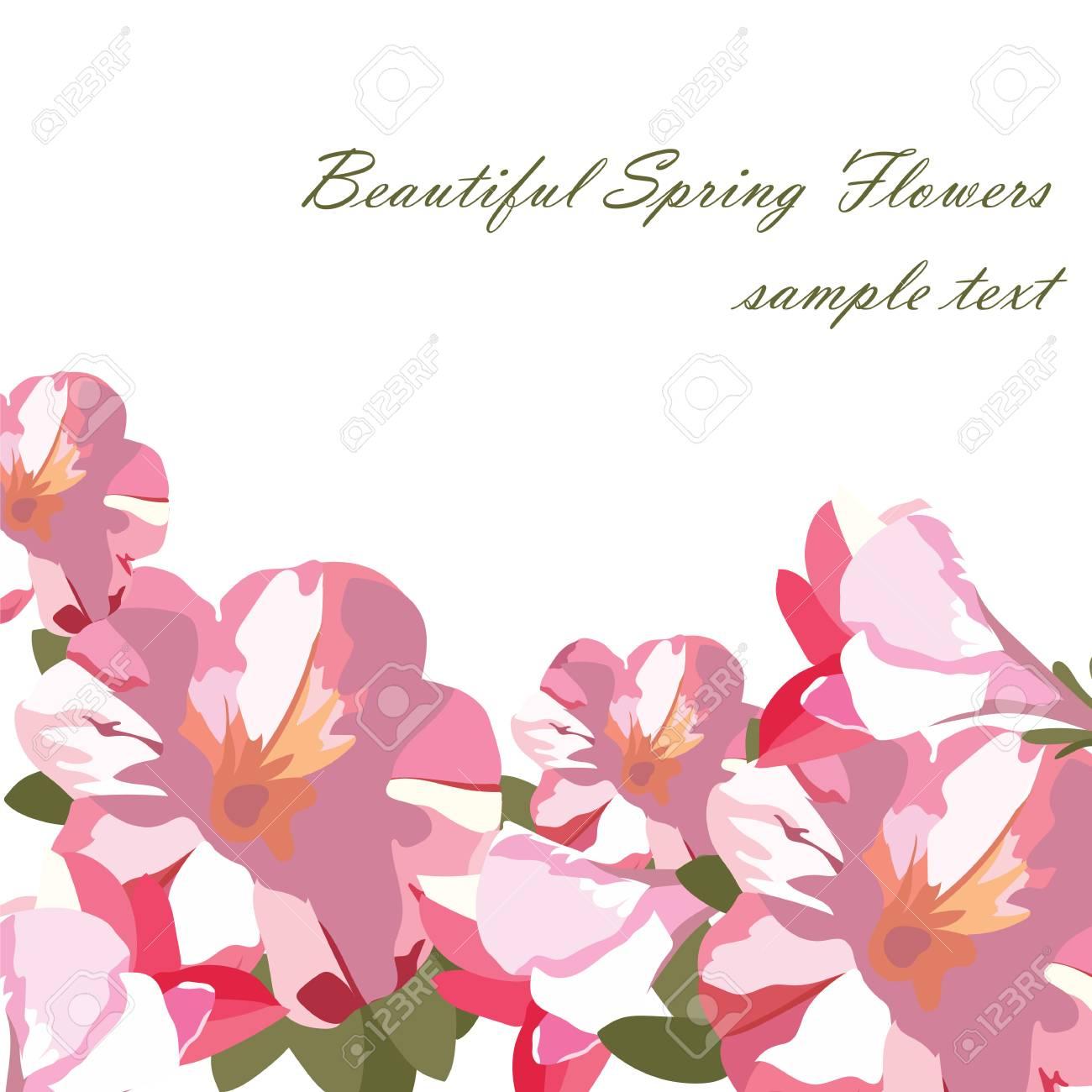 Roze Bloemenboeketkaart Die Op Wit Wordt Geïsoleerd Aquarel Bloemen Illustratie Vintage Elegante Kaart Illustratie Voor De Dag Van De Vrouw