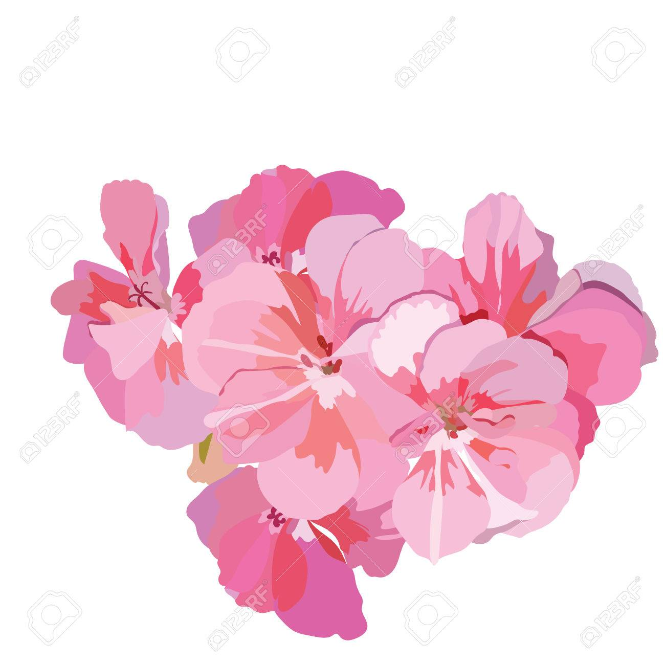 Pink flowers bouquet isolated on white watercolor flowers pink flowers bouquet isolated on white watercolor flowers illustration vintage elegant card illustration for mightylinksfo
