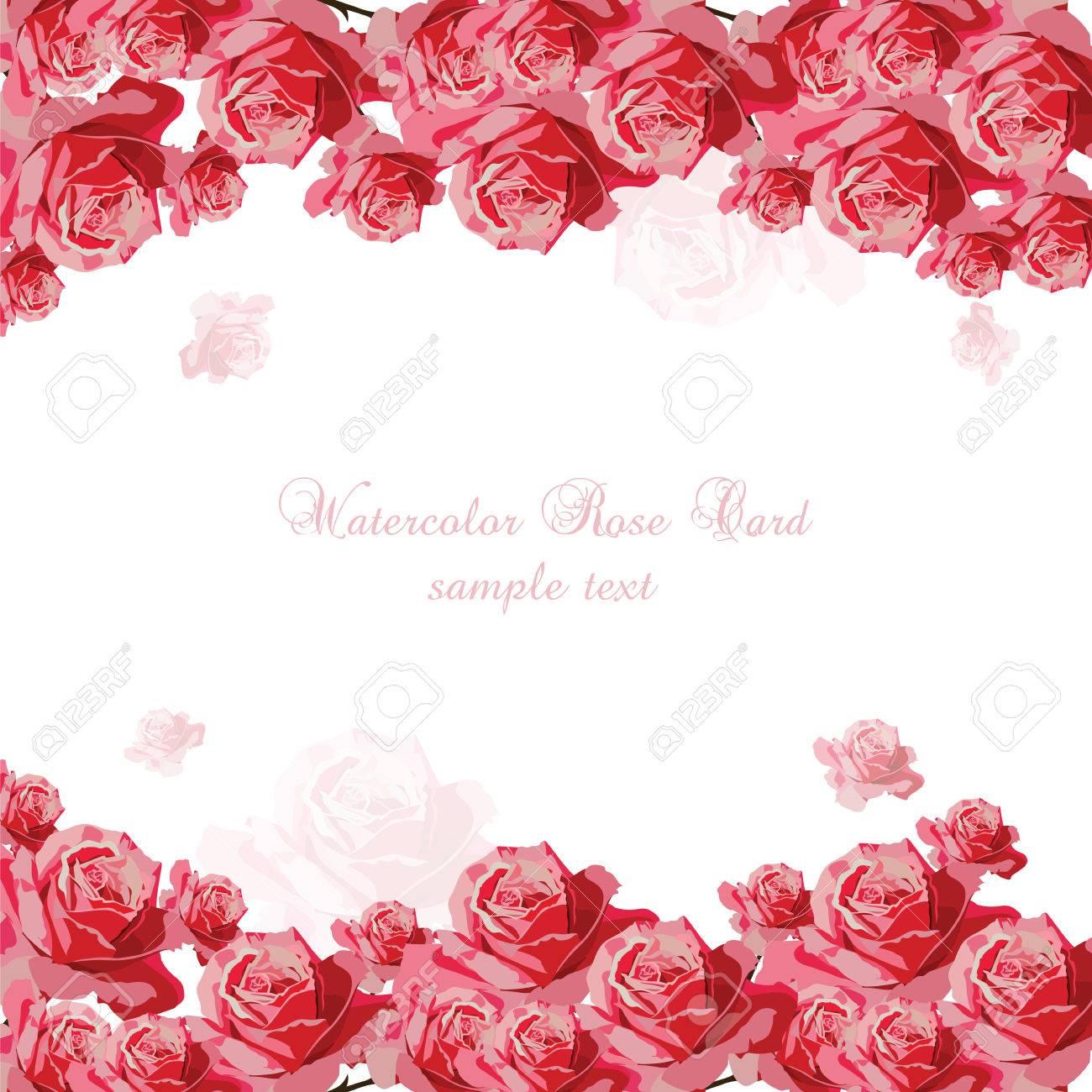 Tarjeta Del Ramo De Rosas Rosadas Delicadas Vector De La Flor Se Levantó Para Tarjetas De Felicitación De Fondo Y Las Invitaciones De La Boda