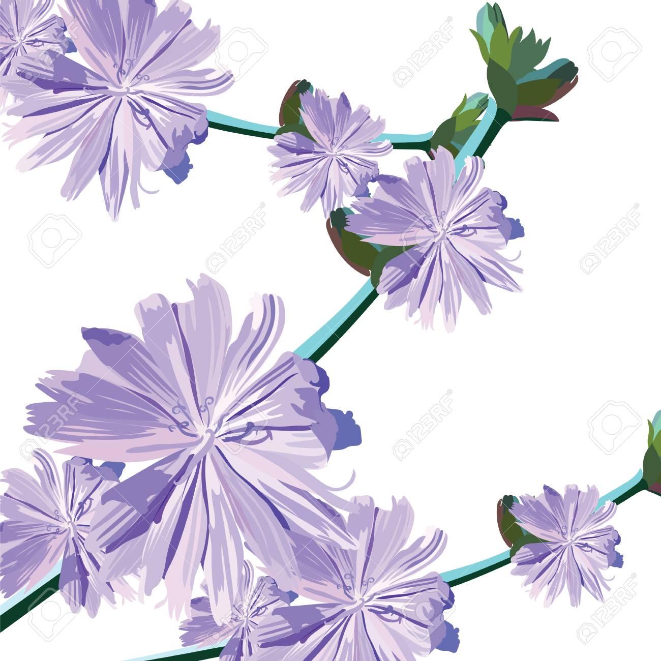 Watercolor delicate purple flowers bouquet vintage elegant watercolor delicate purple flowers bouquet vintage elegant illustration for womens day birthday wedding izmirmasajfo