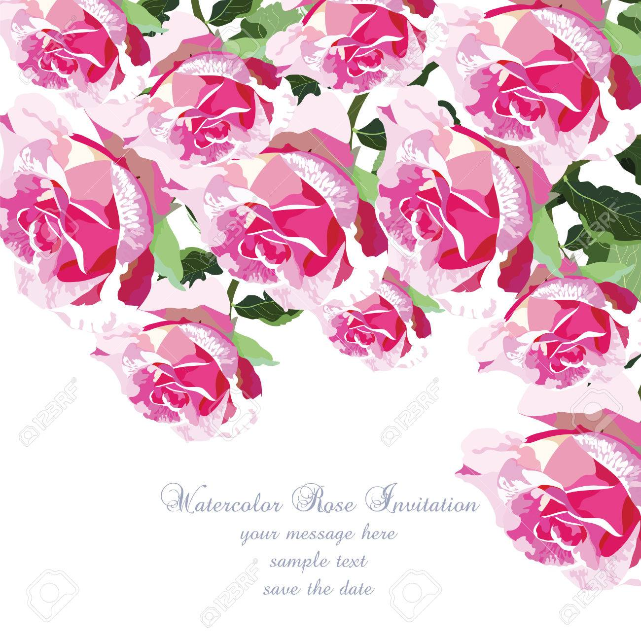 Watercolor Pink Rose Flowers Card Floral Border For Background